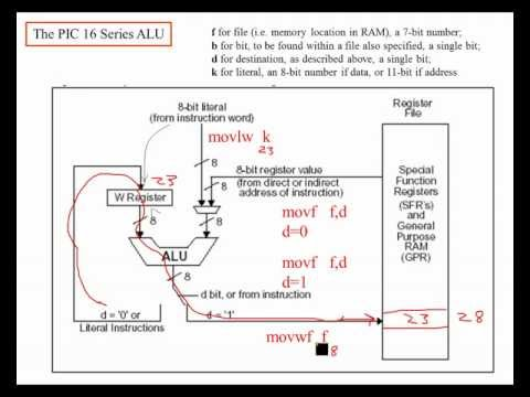 PIC16 Microcontrollers, Unit 18, Ch. 4; Assembly Move Commands