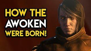 Destiny 2 - HOW THE AWOKEN WERE BORN! Origin, 1st Queen, MORE!