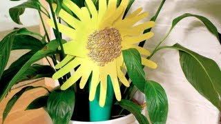 Learn How to make a Sunflower with REAL Sunflower seeds!