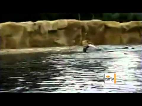Sea World fighting fine after tragic death