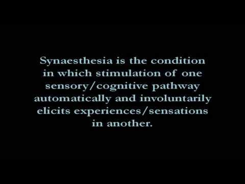 Synaesthesia - Letters & Numbers with Colours & Personalities