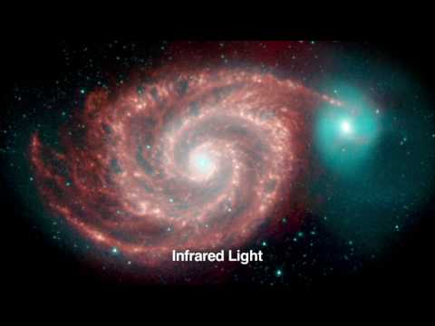 Wide-Field Infrared Survey Explorer - A Celestial Treasure Hunt
