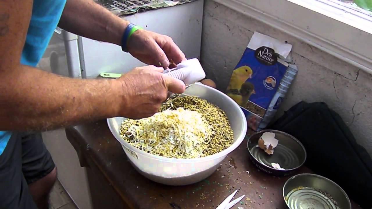 Noel making egg food 007 youtube noel making egg food 007 forumfinder Image collections