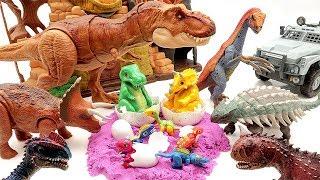 Jurassic World 2 Dinosaurs Eggs Hatching~ 공룡메카드 Dinosaur Toys For Kids~ 공룡알 부화