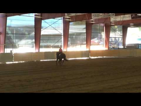Blackie and Pat Roberts Reining