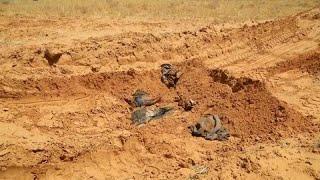 ООН призывает расследовать военные преступления в Ливии…