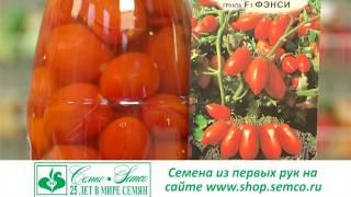 скороспелые томаты для консервирования. Советы и секреты. Выпуск 24