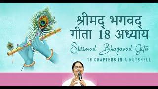 श्रीमद् भगवद् गीता - 18 अध्यायवर्तमान समय में प्रयोग की आवश्यकता | 18 Chapters in a Nutshell
