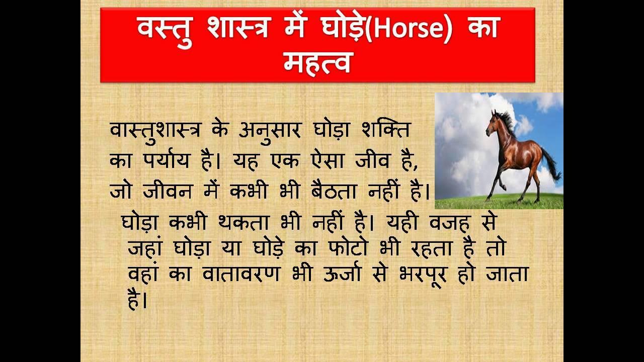 Vastu Tips Horse By Muktajyotishs