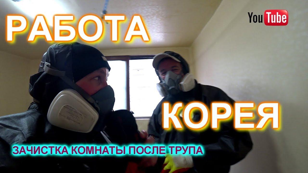Работа в корее зачистка квартиры после трупа!!!