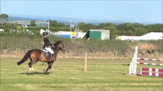 Cardigan County Show 2014