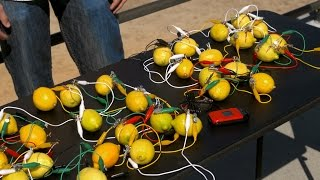 Would You Believe That You Can Charge a Phone with Lemons?!