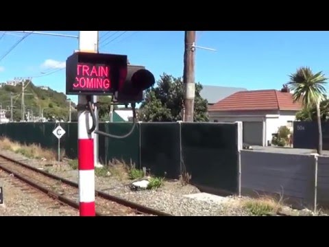 Twin Pedestrian Level Crossings at Plimmerton Staion