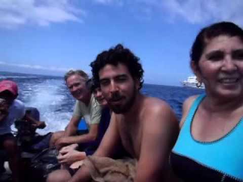 Real Travel Reviews of Galapagos Options