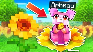 Playing Minecraft As The SECRET Pink Hamster!