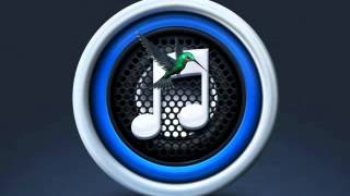 EID SONG MP3 BANGLA FLOK SONGসবাই বলে বয়স বারে