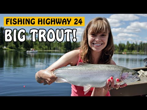 TROUT PULLED MY FLY FISHING ROD IN! First Step On The FISHING HIGHWAY | Fishing With Rod