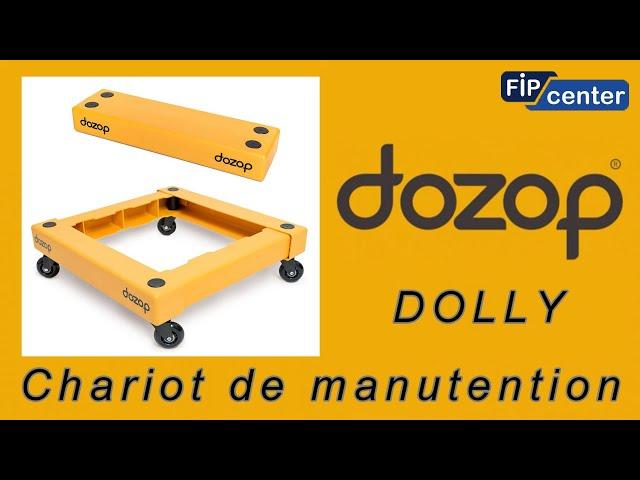 FIPCENTER CHARIOT DE MANUTENTION CAPACITE 115 KG DOZOP DOLLY