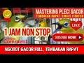 Mastering Pleci Tembakan Rapat Fighter