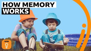 Why your first memory is probably wrong | BBC Ideas