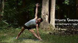 Йога для начинающих 15 минут. Бодрость и тонус. Йога Айенгара
