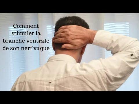 Comment Stimuler La Branche Ventrale Du Nerf Vague