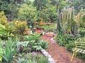 Sue's Secret Garden