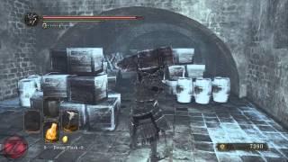 Dark Souls II: Crown of the Ivory King PC Gameplay *HD* 1080P Max Settings