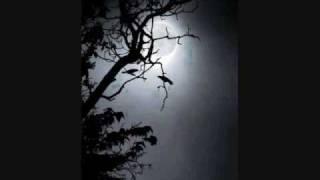 Minami Kuribayashi - Hoshizora no Waltz (Japanese/ English subs) + MP3