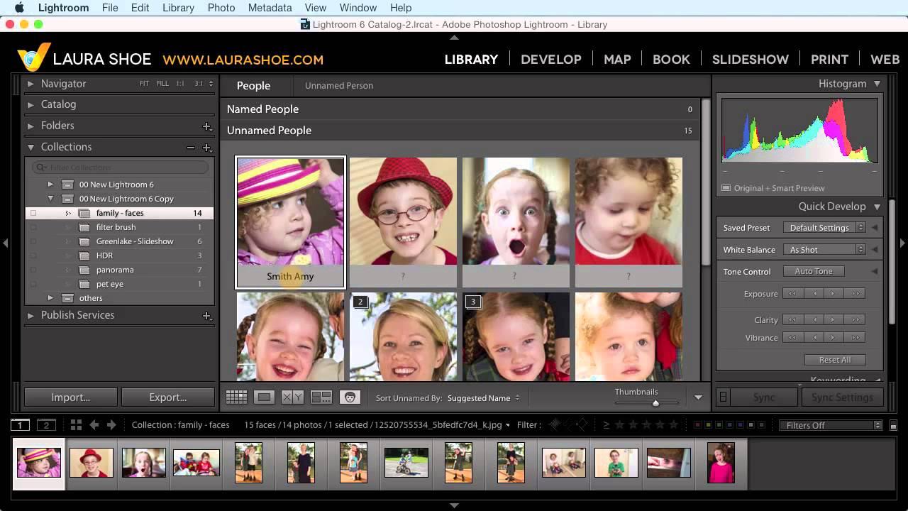 Lightroom 6 tutorial pdf