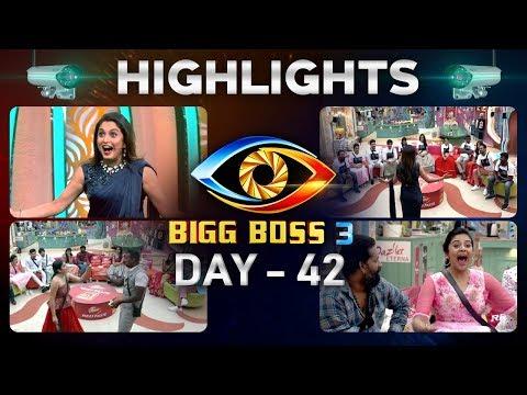 Bigg Boss Telugu Season 3: Day 42 Highlights | No Elimination For 7th Week | ABN Telugu teluguvoice