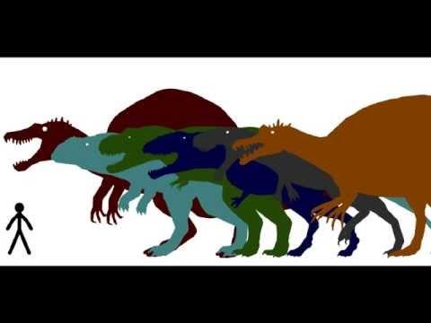 more accurate predatory size comparison 3