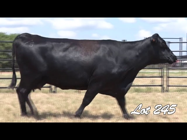 Pollard Farms Lot 245