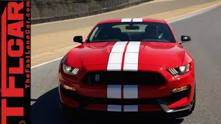 2016 Ford Mustang Shelby GT350 vs GT350R: Everything You Ever Wanted to Know