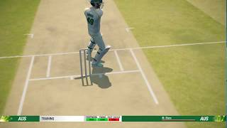 CRICKET 19! - STEVE SMITH BATTING GAME PLAY