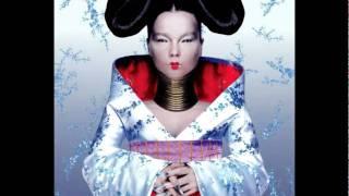 Björk - Hunter - Homogenic
