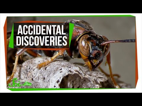6-accidental-discoveries-you've-probably-never-heard-of