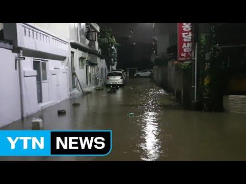 강원 동해안 새벽 폭우...비 피해 속출 / YTN