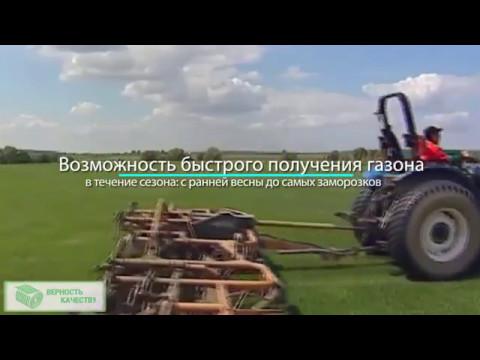 Рулонные газоны в Москве компания Верность качеству