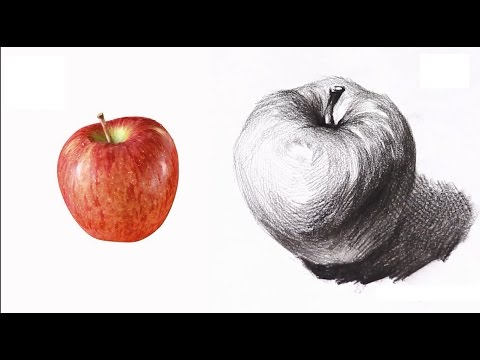 [-basic-drawing-]-how-to-draw-fruits-02