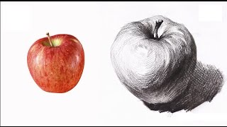 [ Basic Drawing ] How To Draw Fruits 02