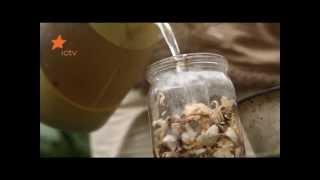 """Удобрение для растений из отходов: советы """"Дачи"""""""