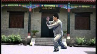 master james fu s 28 forms authentic yang tai chi chuan proficiency demo
