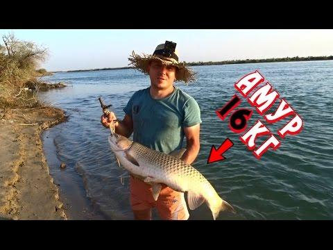 Здесь рыба ЕСТЬ!!! Амур 16кг...Река Или...Рыбалка мечты! ЭПИК!