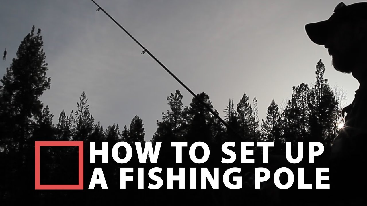 How To Set Up A Fishing Pole  YouTube