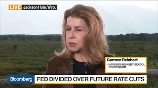 fed-sets-global-interest-rates-professor-reinhart