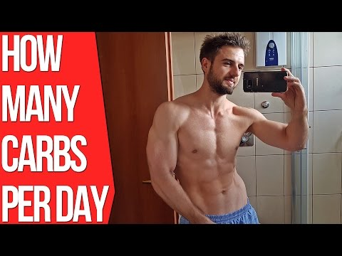 How Many Carbs Per Day To Build Muscle? (As Fast As Possible)