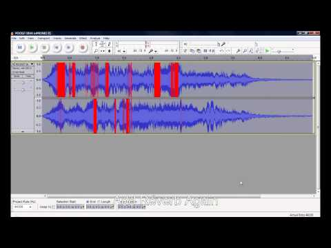 improved audacity vocoder tutorial doovi. Black Bedroom Furniture Sets. Home Design Ideas