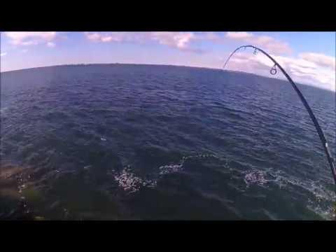 Ling Cod Jetty Fishing - Westport, WA - March 2019