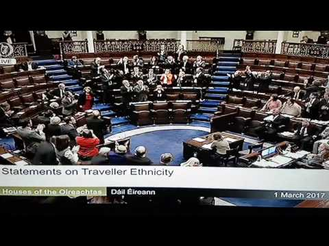 Standing ovation in Irish parliament for recognition of Traveller ethnicity